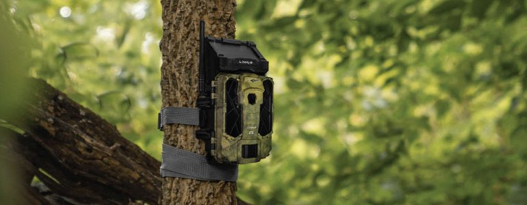 How To Hide a Trail Cam for Home Security and Property Surveillance